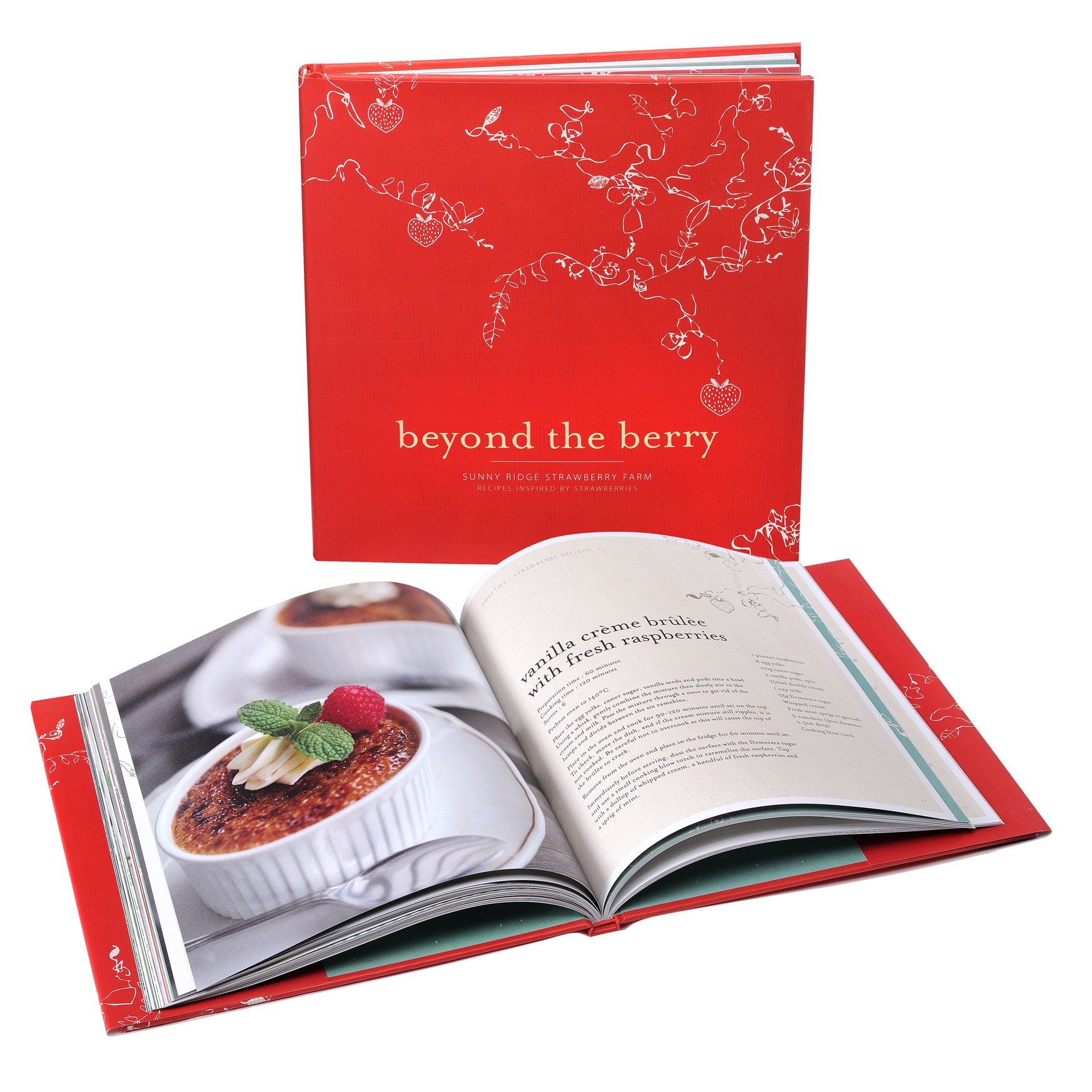 Beyond The Berry Recipe Book